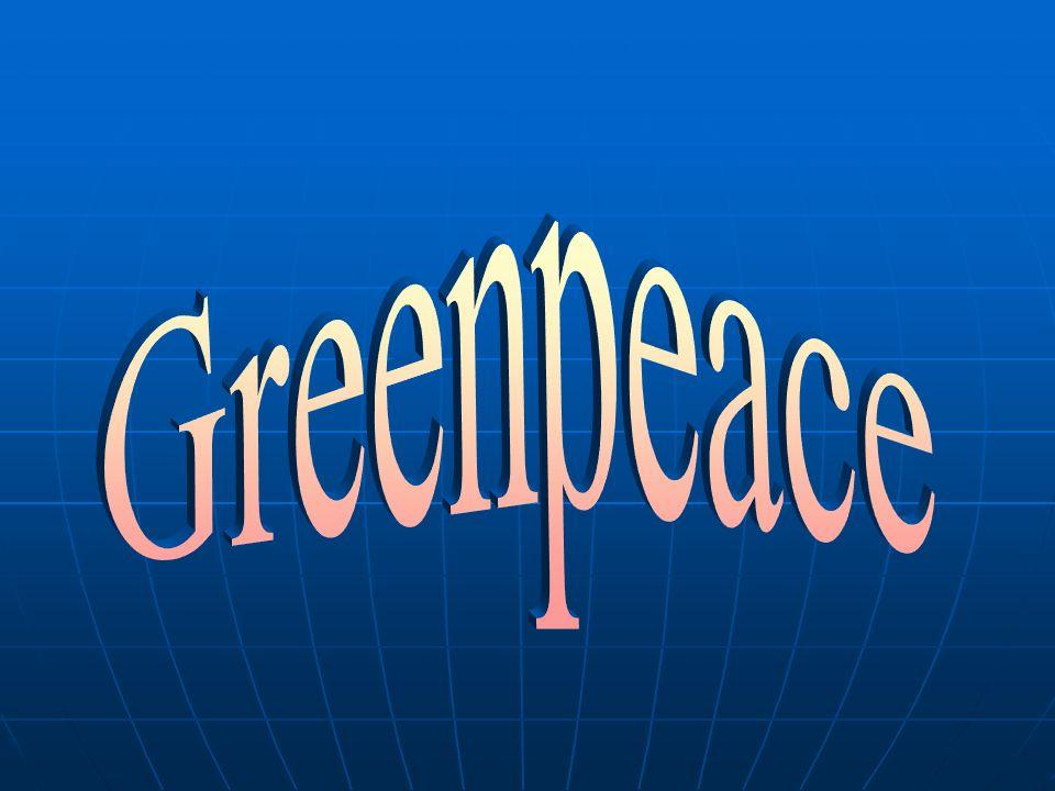 Seit 1971 setzt sich Greenpeace für den Schutz der Lebensgrundlagen ein.