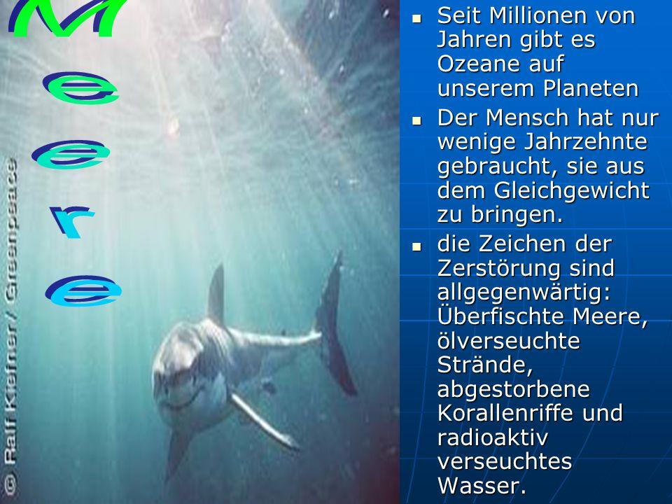 Seit Millionen von Jahren gibt es Ozeane auf unserem Planeten Seit Millionen von Jahren gibt es Ozeane auf unserem Planeten Der Mensch hat nur wenige Jahrzehnte gebraucht, sie aus dem Gleichgewicht zu bringen.