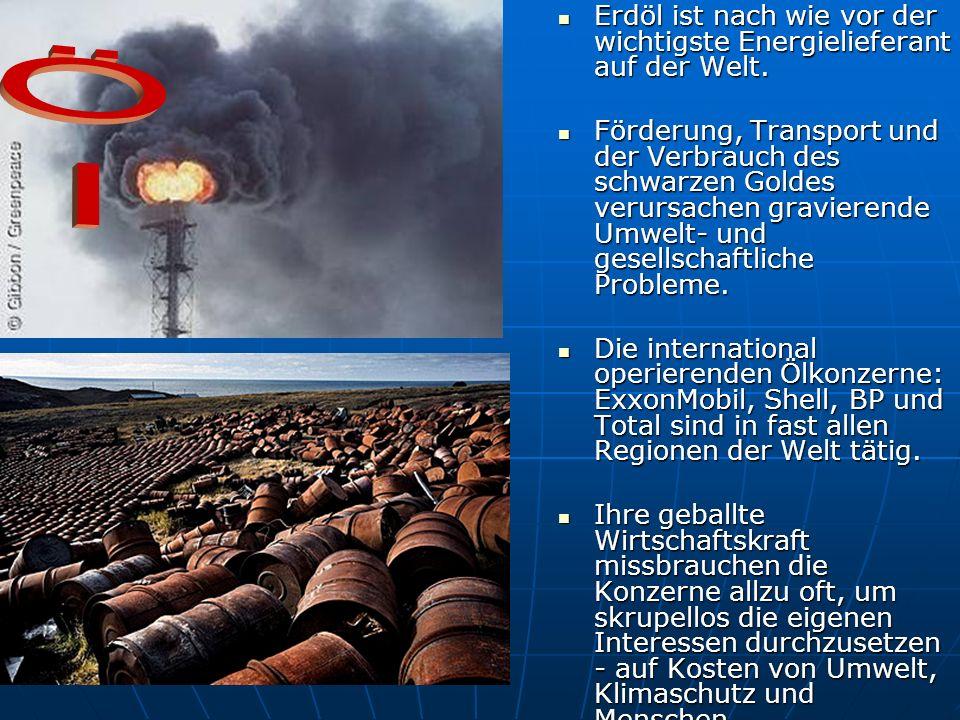 Erdöl ist nach wie vor der wichtigste Energielieferant auf der Welt.