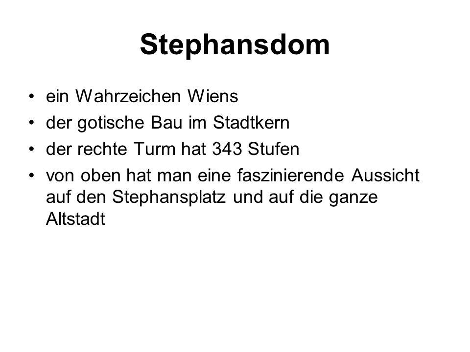 Stephansdom ein Wahrzeichen Wiens der gotische Bau im Stadtkern der rechte Turm hat 343 Stufen von oben hat man eine faszinierende Aussicht auf den Stephansplatz und auf die ganze Altstadt