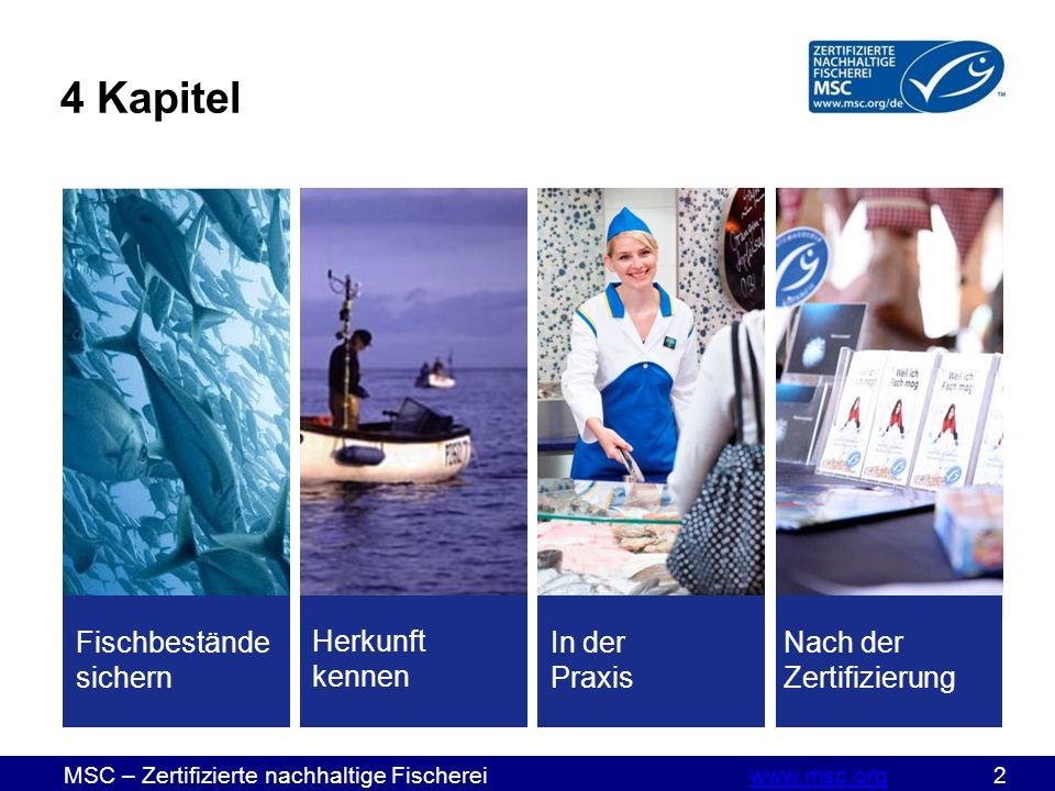 MSC – Zertifizierte nachhaltige Fischereiwww.msc.org 2www.msc.org 4 Kapitel Fischbestände sichern Herkunft kennen Nach der Zertifizierung In der Praxis
