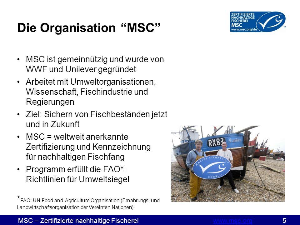 MSC – Zertifizierte nachhaltige Fischereiwww.msc.org 5www.msc.org Die Organisation MSC MSC ist gemeinnützig und wurde von WWF und Unilever gegründet Arbeitet mit Umweltorganisationen, Wissenschaft, Fischindustrie und Regierungen Ziel: Sichern von Fischbeständen jetzt und in Zukunft MSC = weltweit anerkannte Zertifizierung und Kennzeichnung für nachhaltigen Fischfang Programm erfüllt die FAO*- Richtlinien für Umweltsiegel * FAO: UN Food and Agriculture Organisation (Ernährungs- und Landwirtschaftsorganisation der Vereinten Nationen)