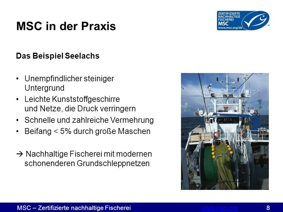 MSC – Zertifizierte nachhaltige Fischereiwww.msc.org 19www.msc.org Wareneingang Prüfen, ob die Ware separat verpackt und mit Zertifizierungscode als MSC- zertifiziert ausgewiesen ist Prüfen, ob auch der Lieferschein Ware als MSC-zertifiziert ausweist Prüfen, ob Menge der Lieferung mit Menge auf Lieferschein übereinstimmt Lieferschein nach Prüfung gegenzeichnen und aufbewahren Ist Ware nicht deutlich als MSC ausgewiesen oder stimmen die Mengen nicht überein, sollten Sie die Ware nicht annehmen.