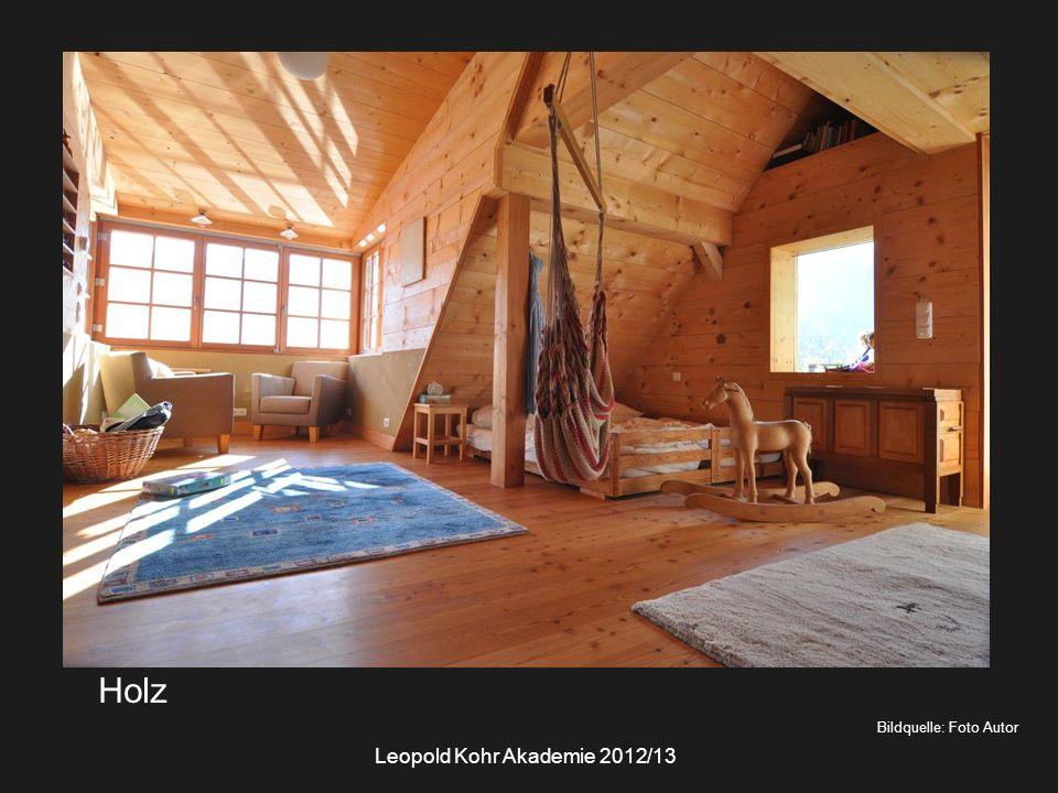 Bildquelle: Foto Autor Holz Leopold Kohr Akademie 2012/13