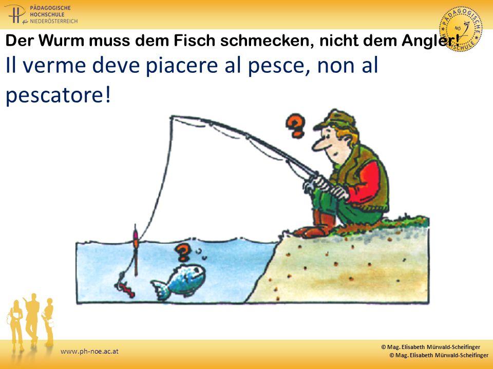 www.ph-noe.ac.at Der Wurm muss dem Fisch schmecken, nicht dem Angler! Il verme deve piacere al pesce, non al pescatore! © Mag. Elisabeth Mürwald-Schei