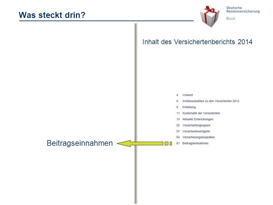 14 Was steckt drin? Beitragseinnahmen Inhalt des Versichertenberichts 2014