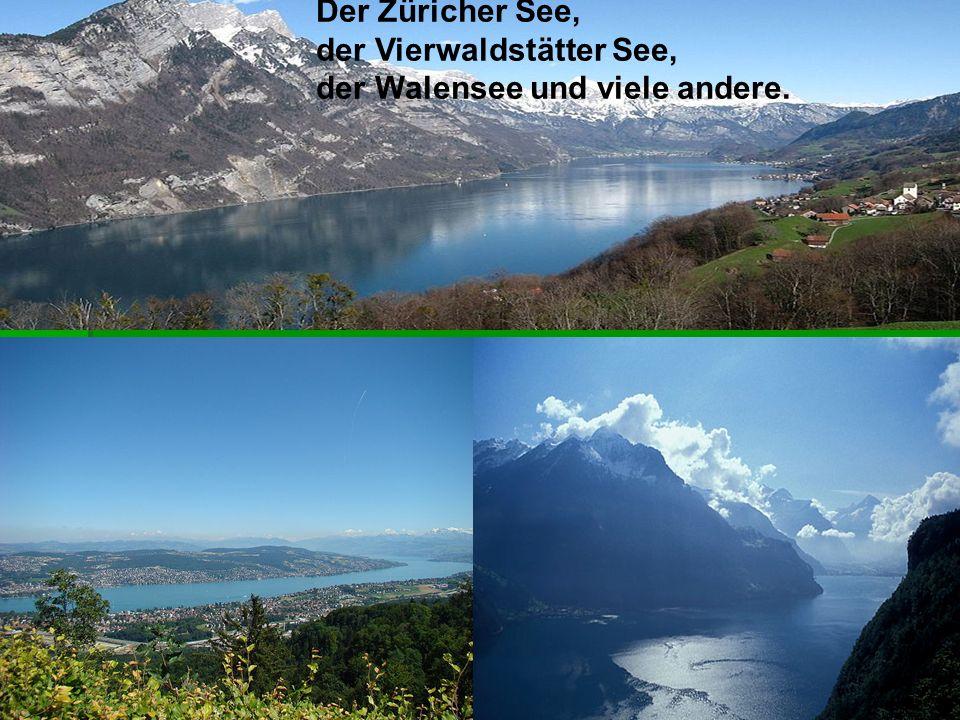 Der Züricher See, der Vierwaldstätter See, der Walensee und viele andere.