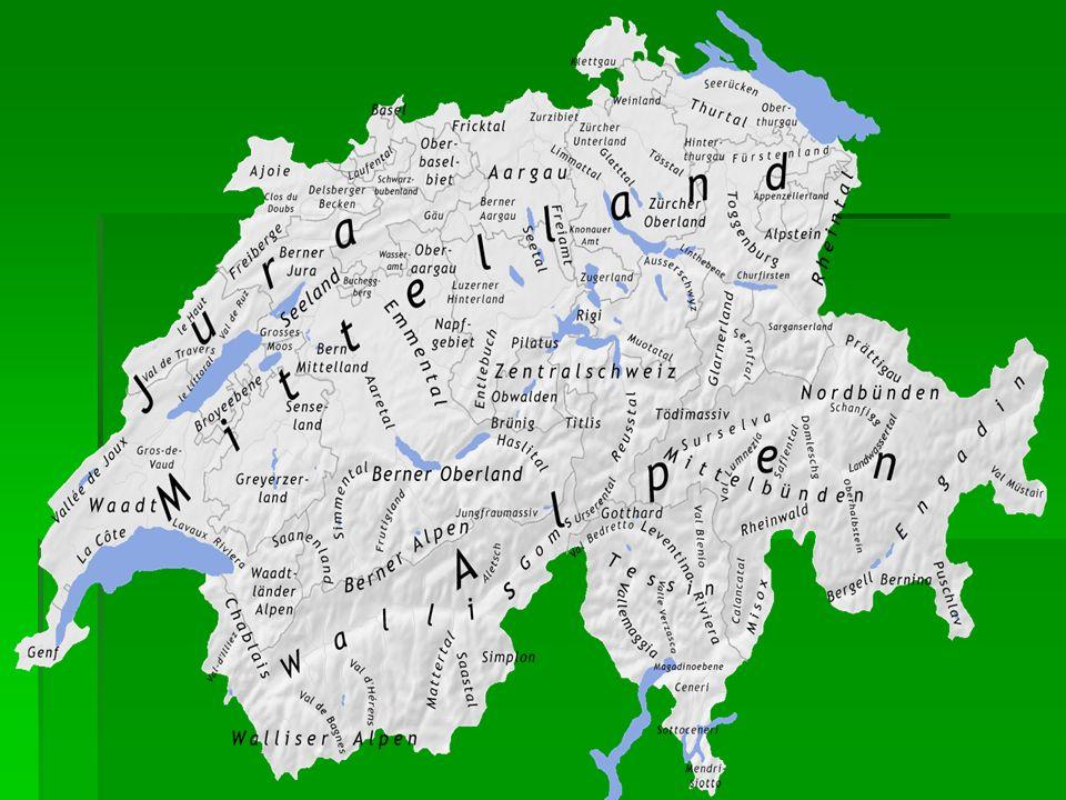 Die Alpen nehmen 60 % der Oberfläche ein.Hier gibt es viele Schneeberge, Gletscher und Bergseen.