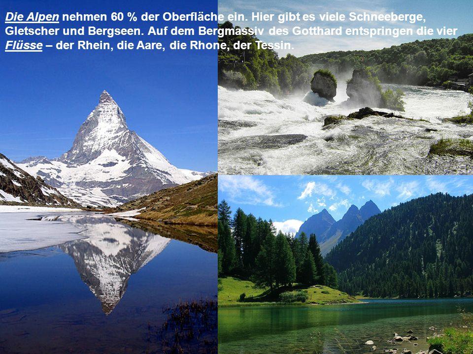 Die Alpen nehmen 60 % der Oberfläche ein. Hier gibt es viele Schneeberge, Gletscher und Bergseen. Auf dem Bergmassiv des Gotthard entspringen die vier