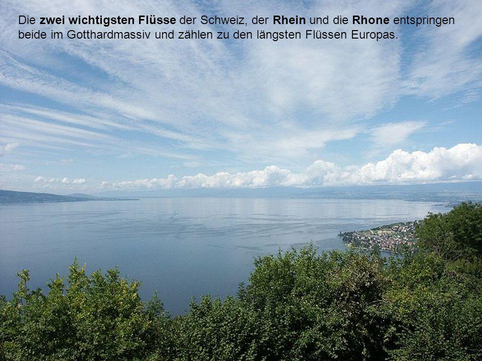 Die zwei wichtigsten Flüsse der Schweiz, der Rhein und die Rhone entspringen beide im Gotthardmassiv und zählen zu den längsten Flüssen Europas.