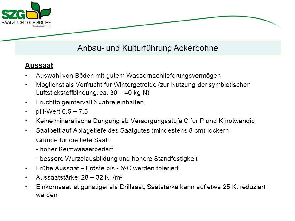 Anbau- und Kulturführung Ackerbohne Aussaat Auswahl von Böden mit gutem Wassernachlieferungsvermögen Möglichst als Vorfrucht für Wintergetreide (zur Nutzung der symbiotischen Luftstickstoffbindung, ca.