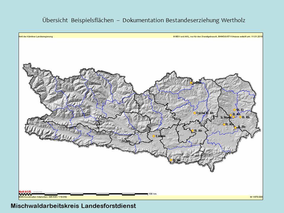 Übersicht Beispielsflächen – Dokumentation Bestandeserziehung Wertholz Mischwaldarbeitskreis Landesforstdienst