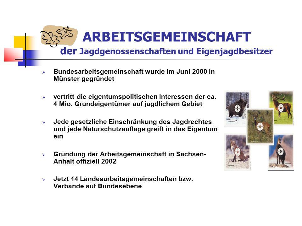  Bundesarbeitsgemeinschaft wurde im Juni 2000 in Münster gegründet  vertritt die eigentumspolitischen Interessen der ca.