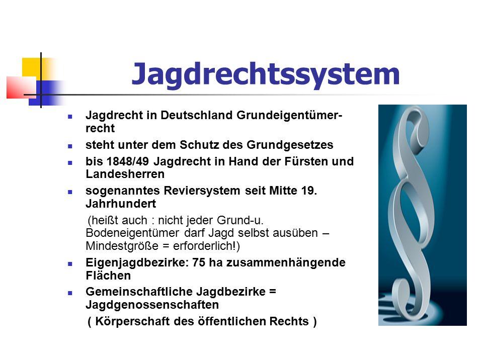 Jagdrechtssystem Jagdrecht in Deutschland Grundeigentümer- recht steht unter dem Schutz des Grundgesetzes bis 1848/49 Jagdrecht in Hand der Fürsten und Landesherren sogenanntes Reviersystem seit Mitte 19.