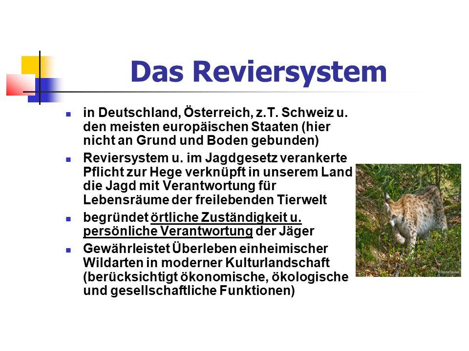 Das Reviersystem in Deutschland, Österreich, z.T.Schweiz u.