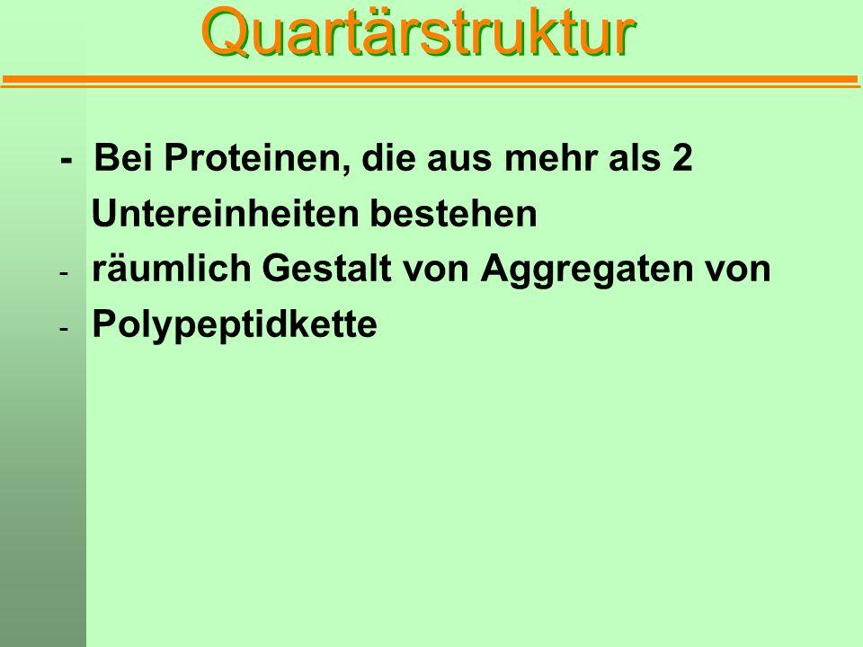 Quartärstruktur - Bei Proteinen, die aus mehr als 2 Untereinheiten bestehen - räumlich Gestalt von Aggregaten von - Polypeptidkette
