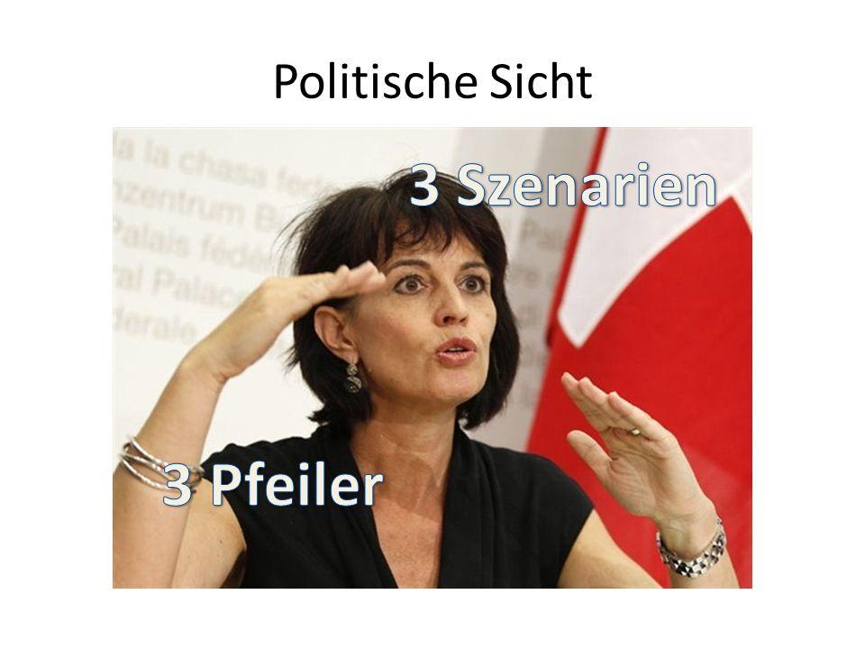 Politische Sicht
