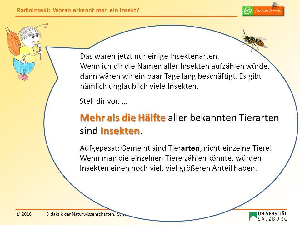 RadioInsekt: Woran erkennt man ein Insekt? © 2016Didaktik der Naturwissenschaften, School of Education, Universität Salzburg Das waren jetzt nur einig