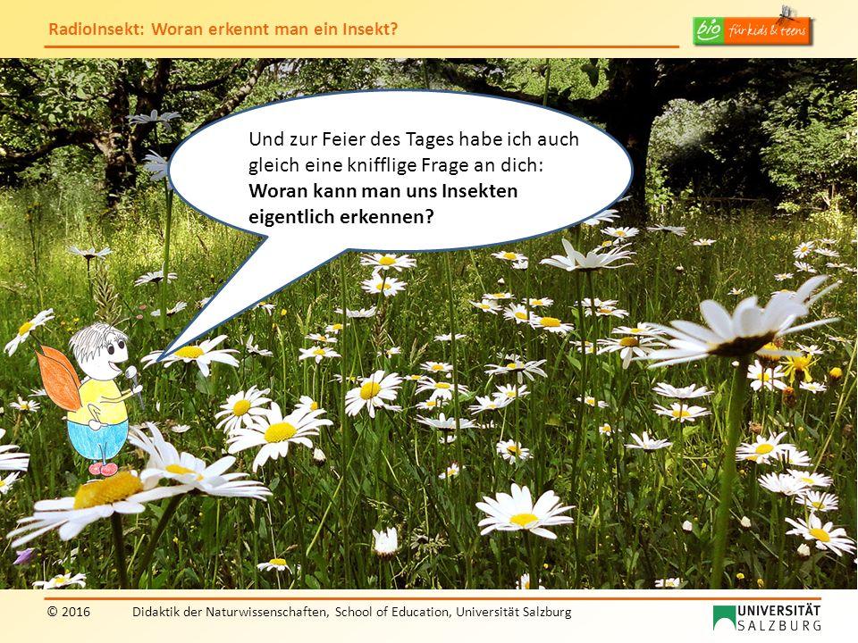 """RadioInsekt: Woran erkennt man ein Insekt? © 2016Didaktik der Naturwissenschaften, School of Education, Universität Salzburg """"RadioInsekt"""" Und zur Fei"""