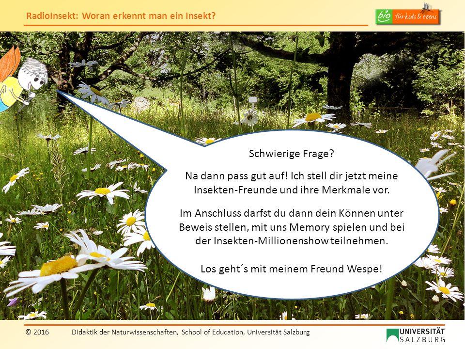 """RadioInsekt: Woran erkennt man ein Insekt? © 2016Didaktik der Naturwissenschaften, School of Education, Universität Salzburg """"RadioInsekt"""" Schwierige"""