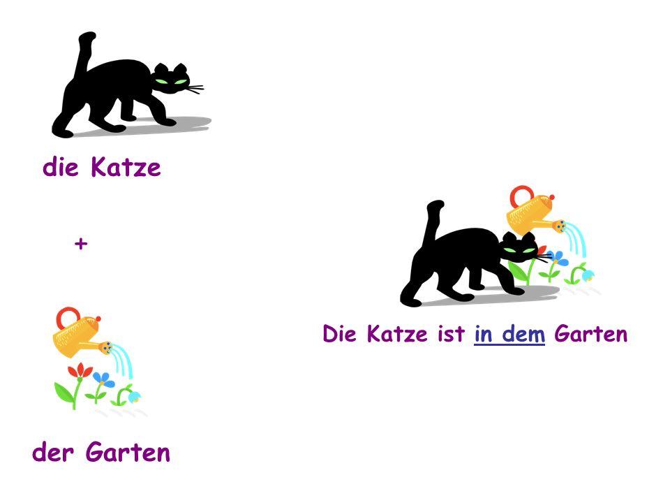 die Katze der Garten + Die Katze ist in dem Garten
