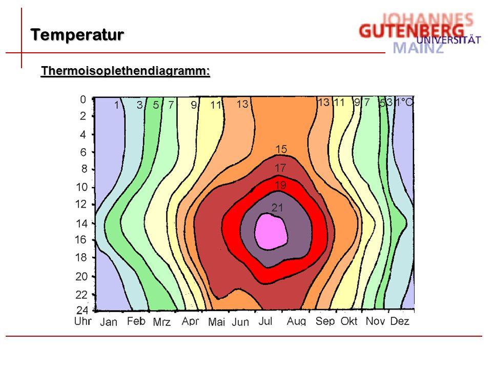 Temperatur Thermoisoplethendiagramm: