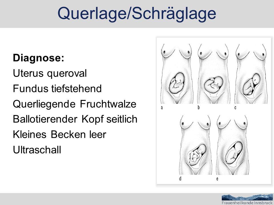 Diagnose: Uterus queroval Fundus tiefstehend Querliegende Fruchtwalze Ballotierender Kopf seitlich Kleines Becken leer Ultraschall Querlage/Schräglage