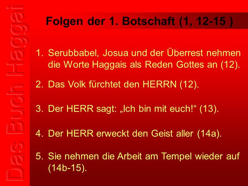 Folgen der 1. Botschaft (1, 12-15 ) 1.Serubbabel, Josua und der Überrest nehmen die Worte Haggais als Reden Gottes an (12). 2.Das Volk fürchtet den HE