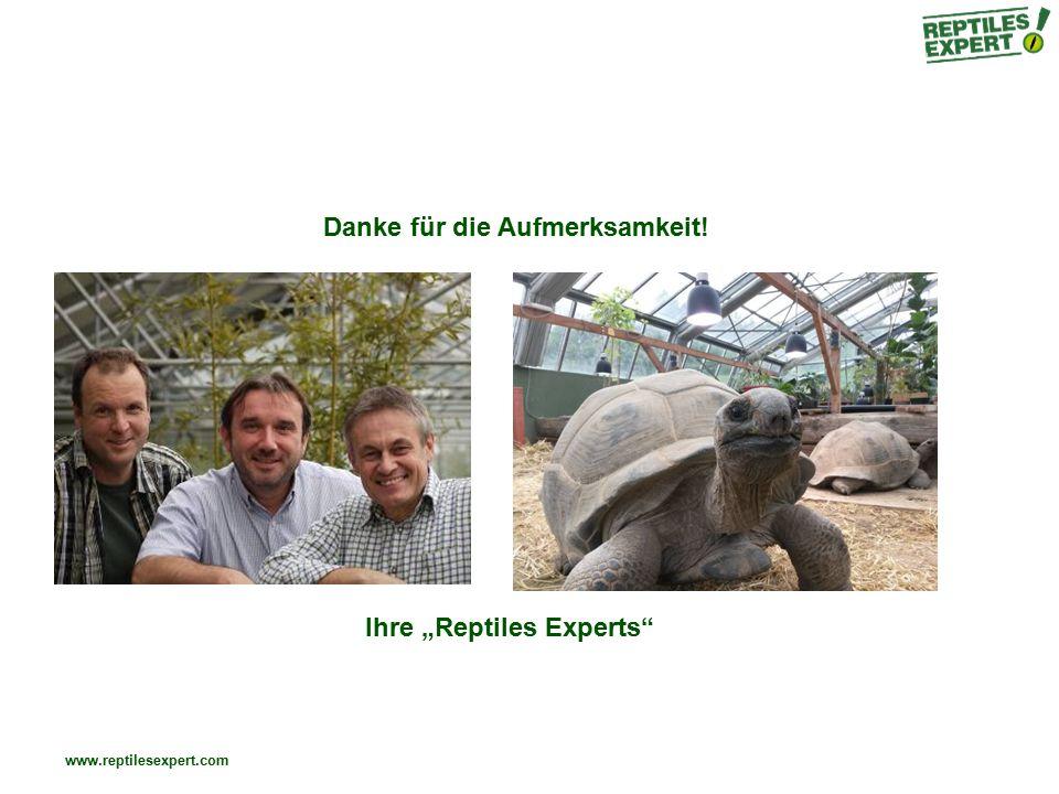 """www.reptilesexpert.com Danke für die Aufmerksamkeit! Ihre """"Reptiles Experts"""