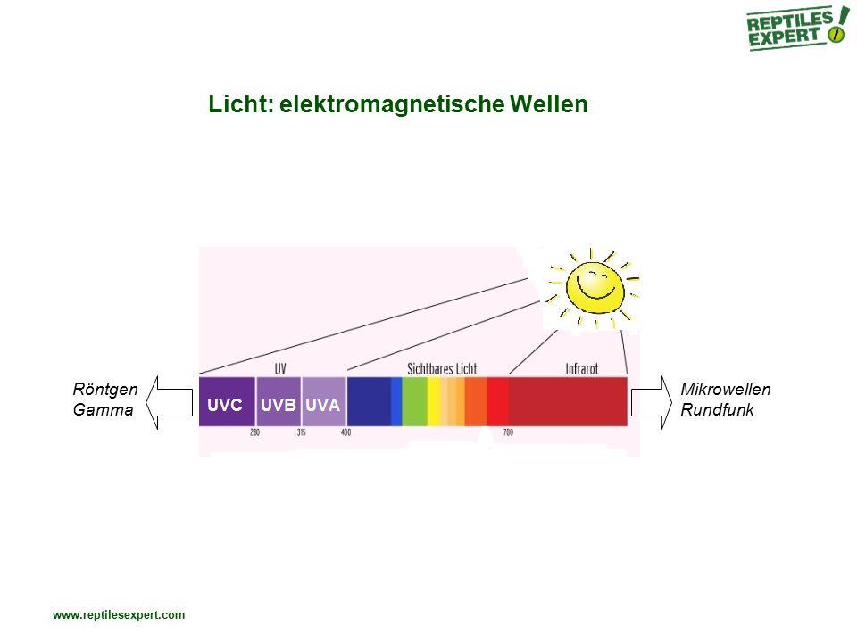 www.reptilesexpert.com Licht: elektromagnetische Wellen Röntgen Gamma Mikrowellen Rundfunk