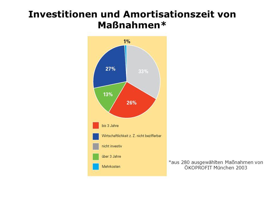 Investitionen und Amortisationszeit von Maßnahmen* *aus 280 ausgewählten Maßnahmen von ÖKOPROFIT München 2003