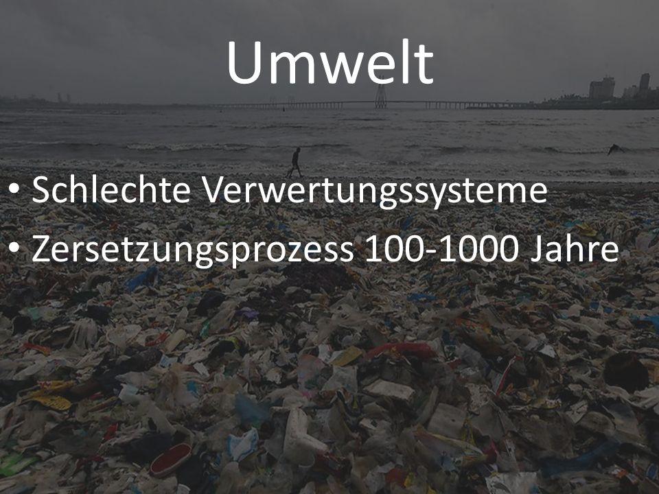 Umwelt Schlechte Verwertungssysteme Zersetzungsprozess 100-1000 Jahre