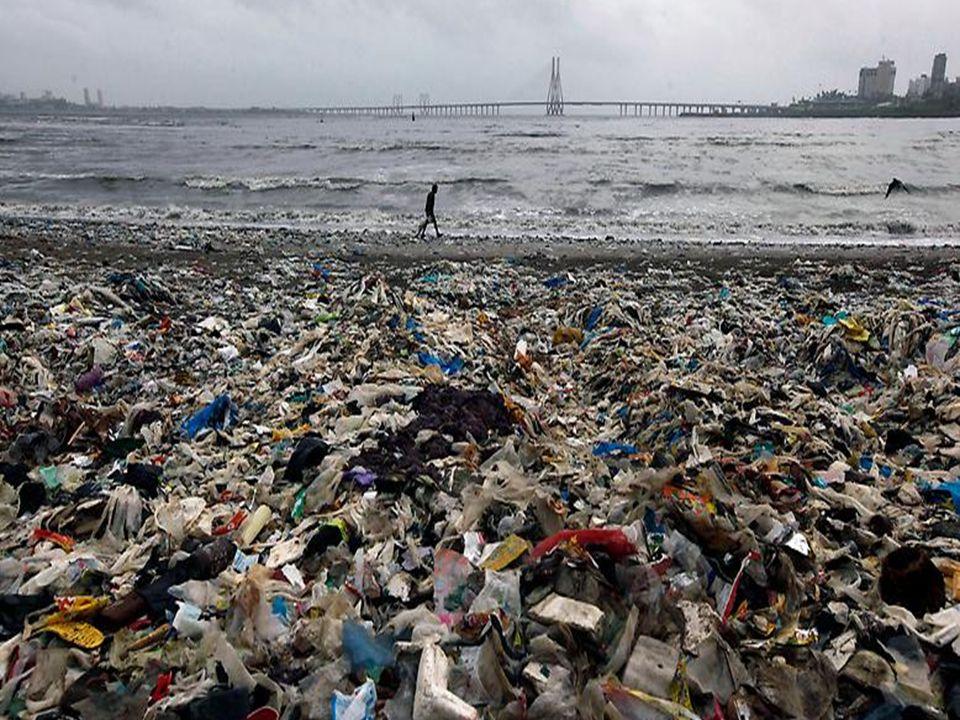 Papiersackerl Pros: Weniger Schadstoffe Keine giftige Abgase Weniger fest Contra: Vernichtung der Wälder Bei Regen zerreißt es