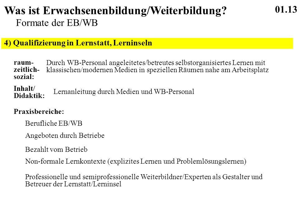 4) Qualifizierung in Lernstatt, Lerninseln 01.13 Was ist Erwachsenenbildung/Weiterbildung.