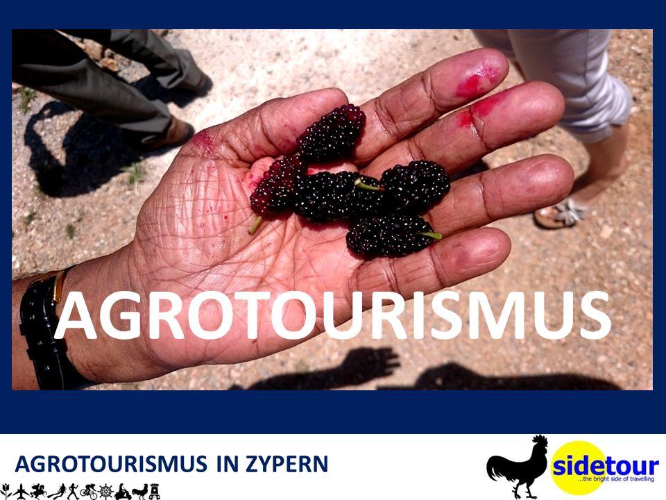 AGROTOURISMUS IN ZYPERN AGROTOURISMUS