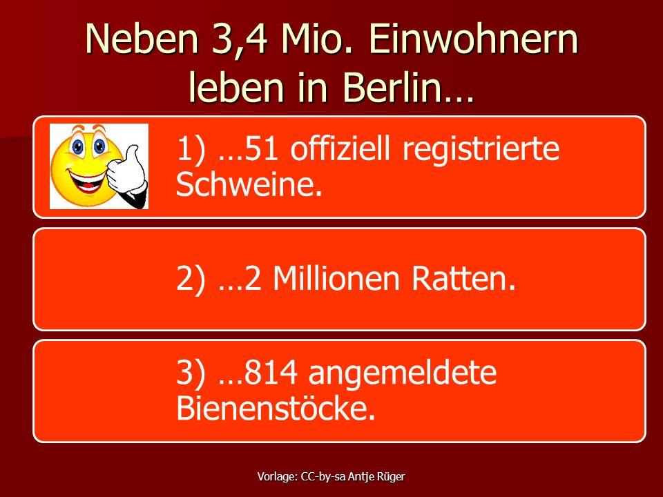 Neben 3,4 Mio. Einwohnern leben in Berlin… 1) …51 offiziell registrierte Schweine.