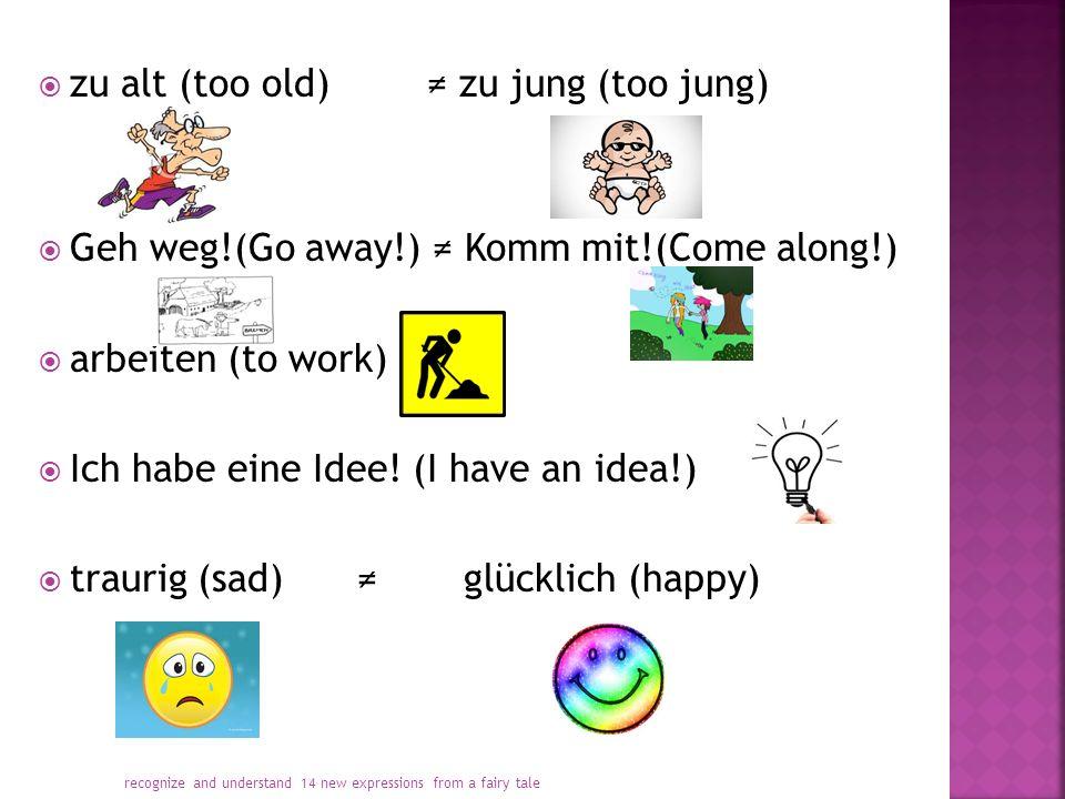  zu alt (too old) ≠ zu jung (too jung)  Geh weg!(Go away!) ≠ Komm mit!(Come along!)  arbeiten (to work)  Ich habe eine Idee.