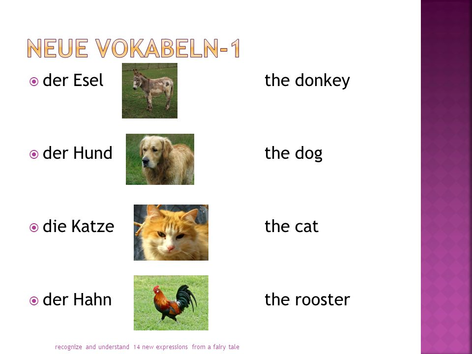  der Eselthe donkey  der Hundthe dog  die Katzethe cat  der Hahnthe rooster recognize and understand 14 new expressions from a fairy tale