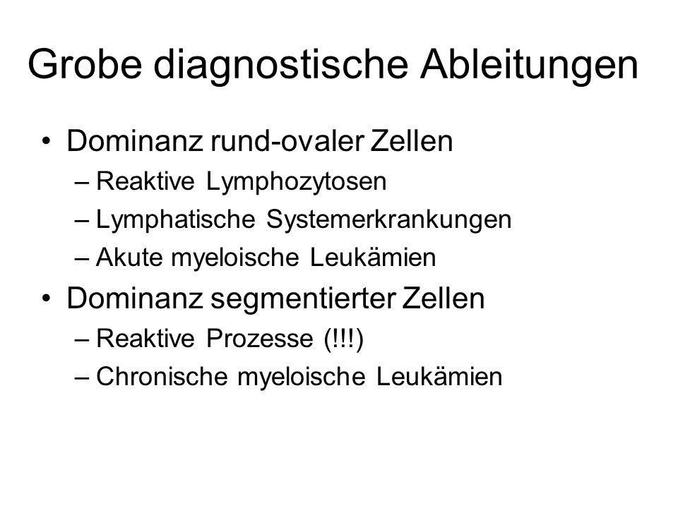 Grobe diagnostische Ableitungen Dominanz rund-ovaler Zellen –Reaktive Lymphozytosen –Lymphatische Systemerkrankungen –Akute myeloische Leukämien Domin
