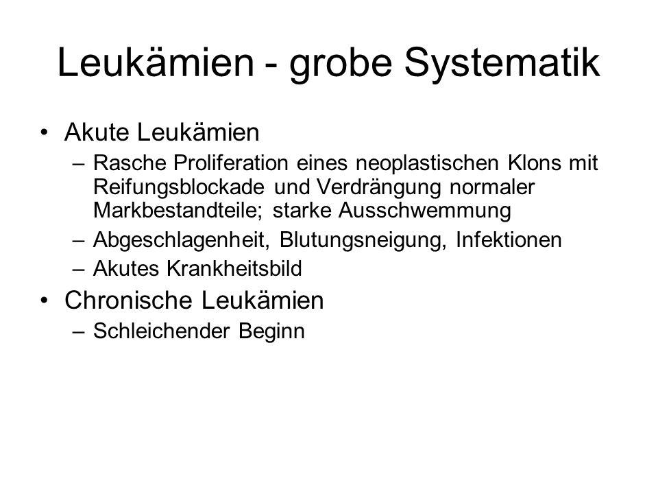 Leukämien - grobe Systematik Akute Leukämien –Rasche Proliferation eines neoplastischen Klons mit Reifungsblockade und Verdrängung normaler Markbestan