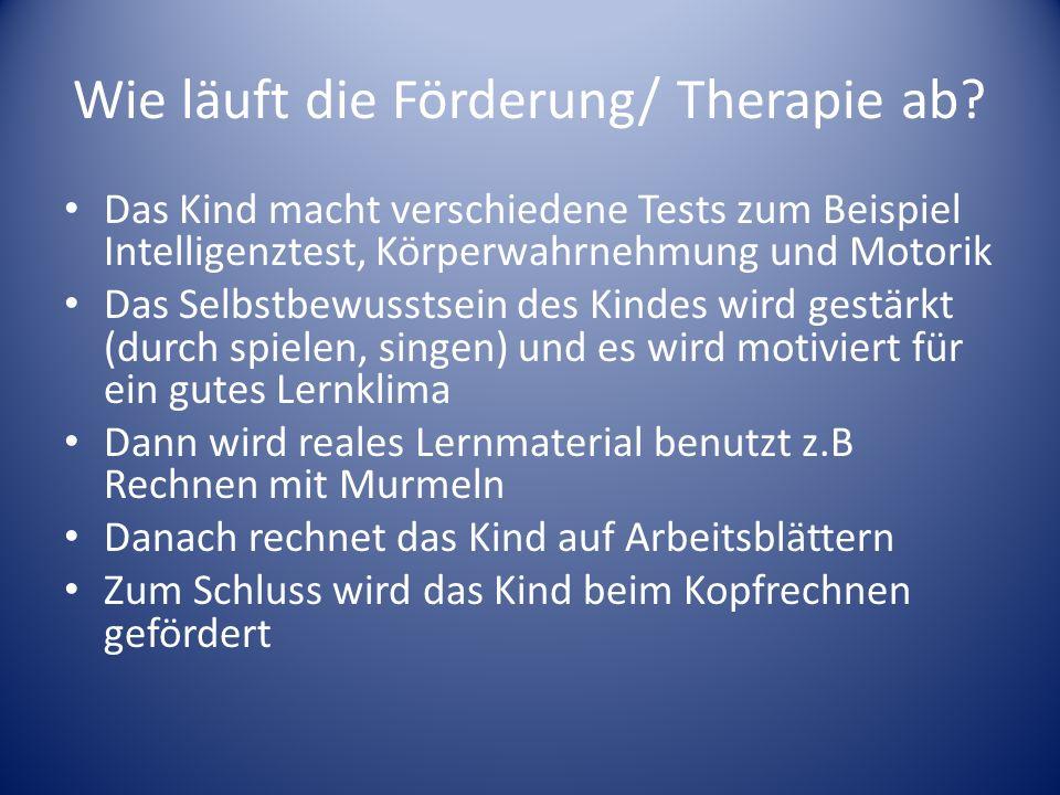 Wie läuft die Förderung/ Therapie ab.