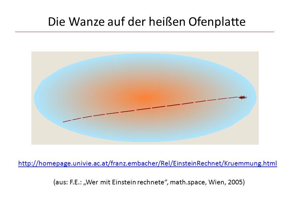 """Die Wanze auf der heißen Ofenplatte http://homepage.univie.ac.at/franz.embacher/Rel/EinsteinRechnet/Kruemmung.html (aus: F.E.: """"Wer mit Einstein rechnete , math.space, Wien, 2005)"""