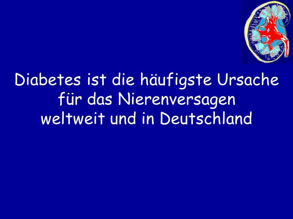 Diabetes ist die häufigste Ursache für das Nierenversagen weltweit und in Deutschland