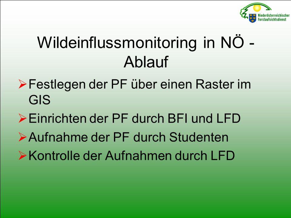 Wildeinflussmonitoring in NÖ - Ablauf  Festlegen der PF über einen Raster im GIS  Einrichten der PF durch BFI und LFD  Aufnahme der PF durch Studenten  Kontrolle der Aufnahmen durch LFD