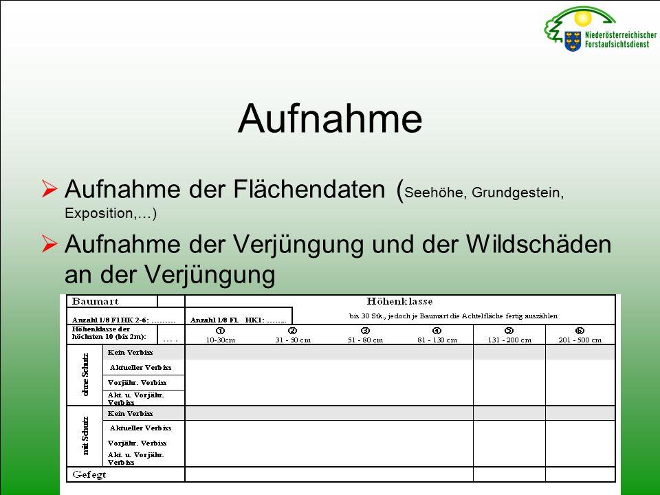 Aufnahme  Aufnahme der Flächendaten ( Seehöhe, Grundgestein, Exposition,…)  Aufnahme der Verjüngung und der Wildschäden an der Verjüngung