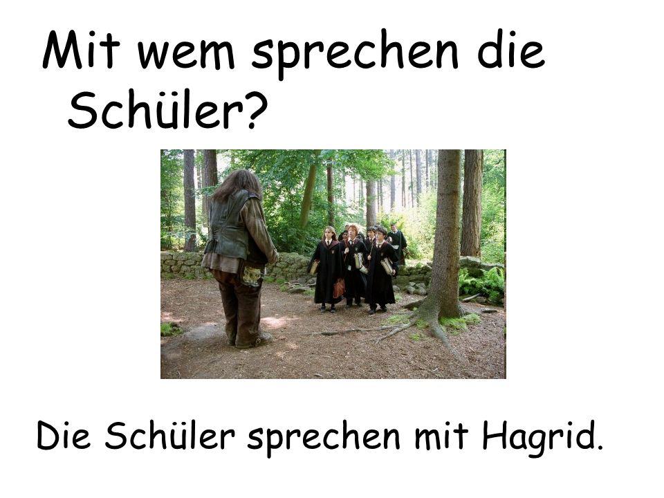 Die Schüler sprechen mit Hagrid. Mit wem sprechen die Schüler?