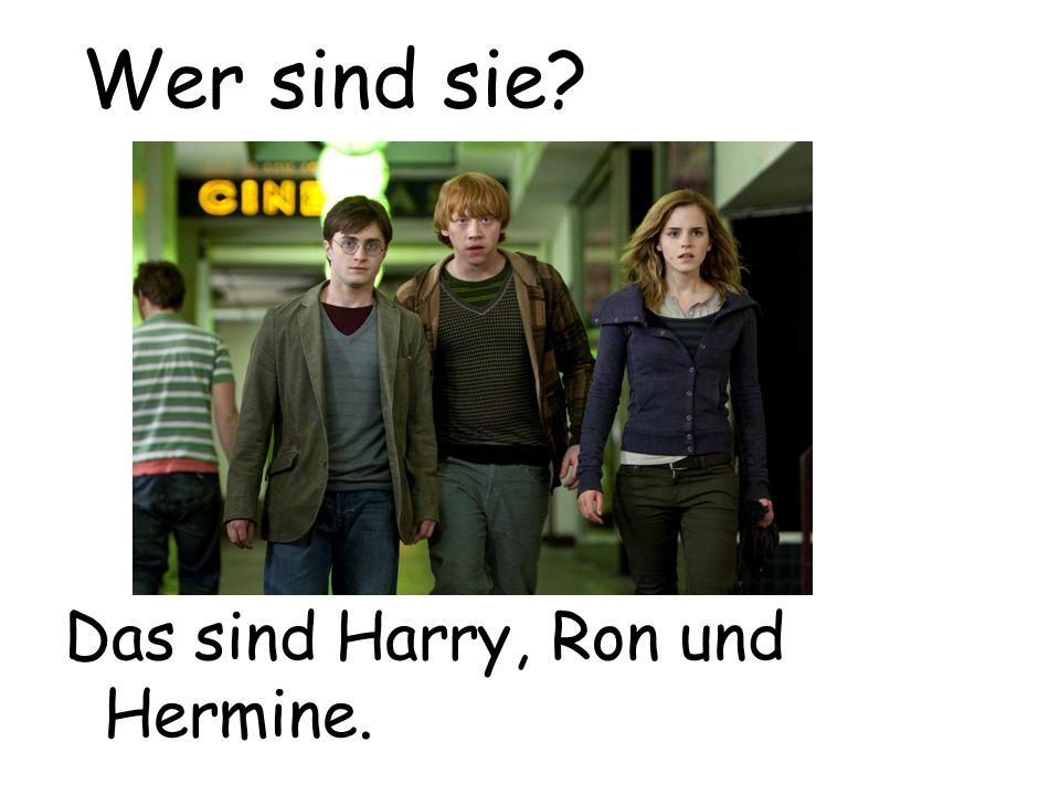 Das sind Harry, Ron und Hermine. Wer sind sie?