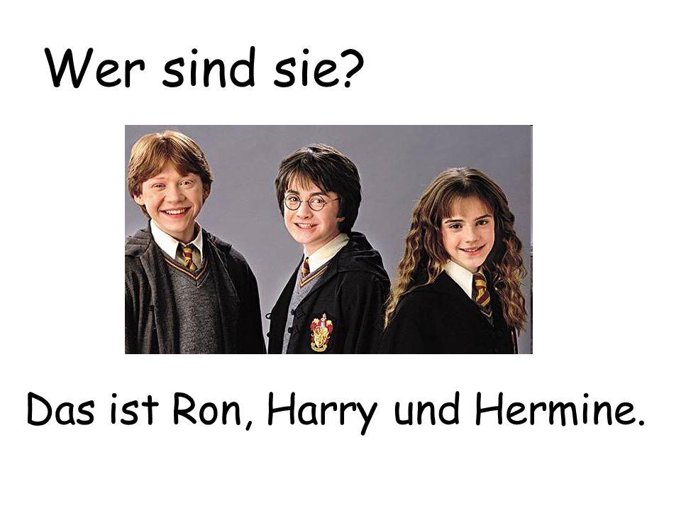 Das ist Ron, Harry und Hermine. Wer sind sie?