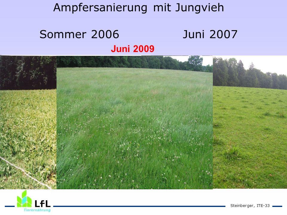 Ampfersanierung mit Jungvieh Sommer 2006Juni 2007 Steinberger, ITE-33 Juni 2009