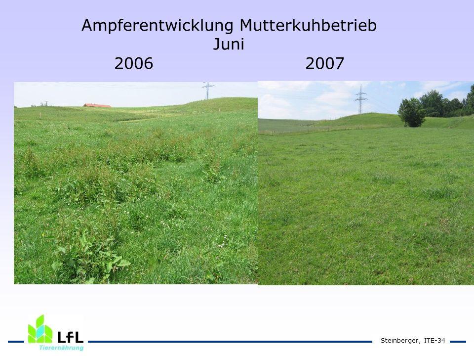 Steinberger, ITE-34 Ampferentwicklung Mutterkuhbetrieb Juni 2006 2007